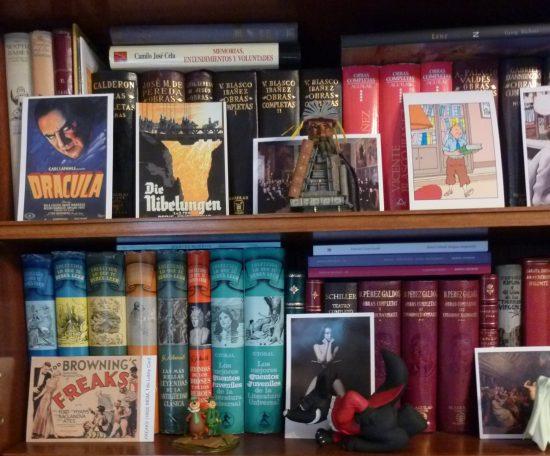 biblioteca-luis-alberto-de-cuenca-detalle